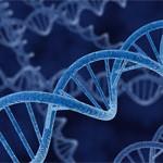 DNA file image