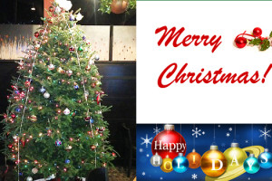 Merry-Christmas-montage-2