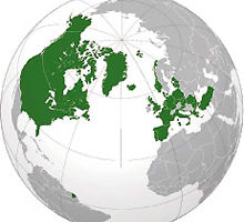 Globe Highlighting NATO Members